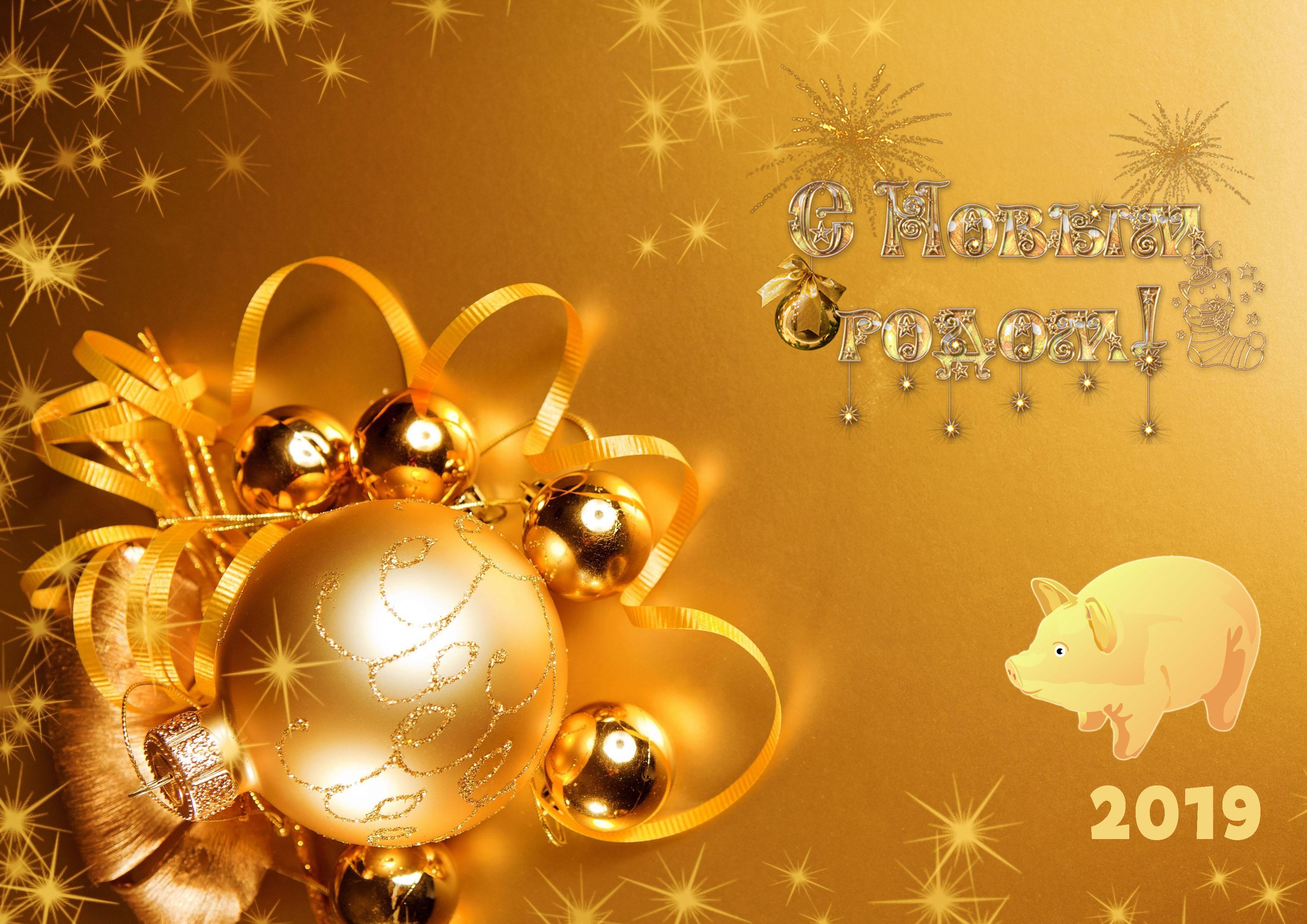 Короткие поздравления с Новым годом 2019 Свиньи. Смешные и короткие рекомендации