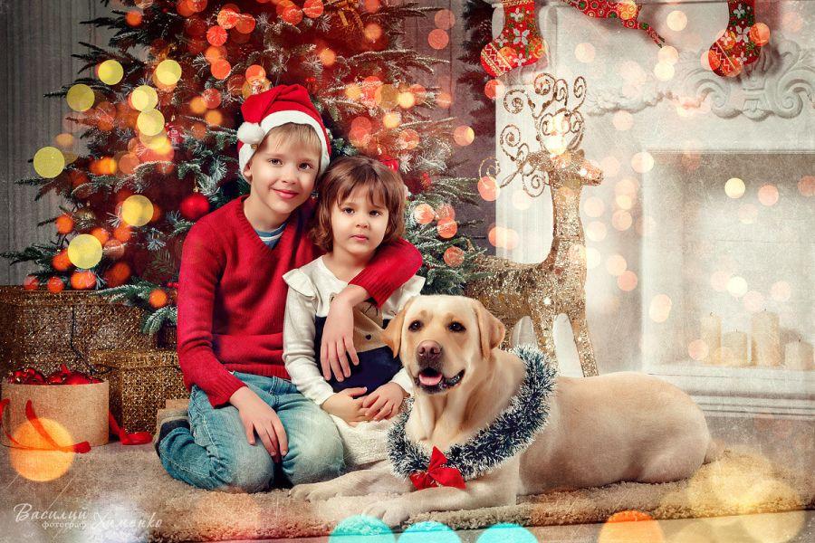 Фотосессия в подарок на Новый год
