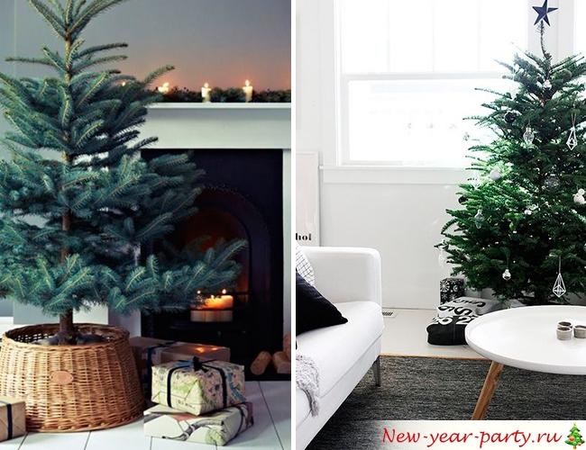 Подарки под деревом