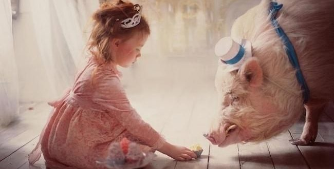 Имена для девочек в год Свиньи