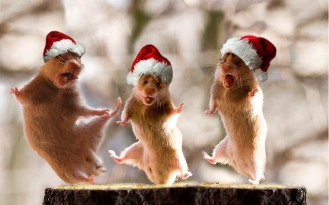Новогодние поздравления для коллектива в прозе