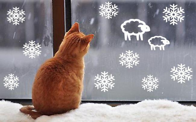 Котик смотрит в окно
