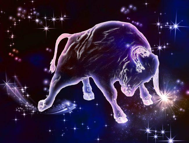 Гороскоп Быка на 2022 год Тигра