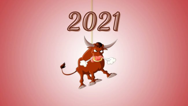 бык обои 2021