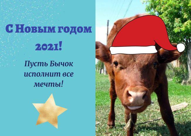 новогодний бык