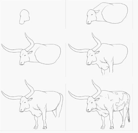 Рисунок буйвола