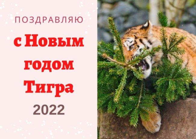 Открытка с Тигром на Новый год 2022