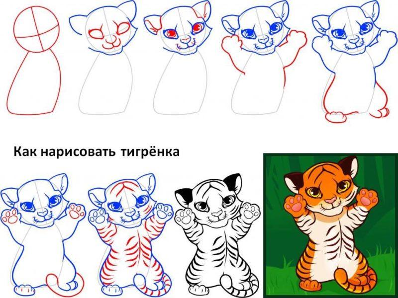 как нарисовать тигра ребенку