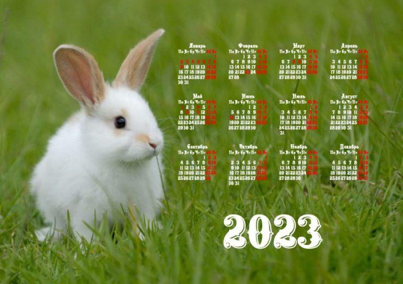Красивые календари 2023 с Кроликом