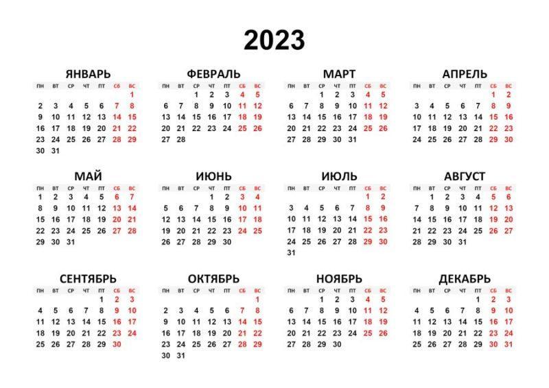 2023 год