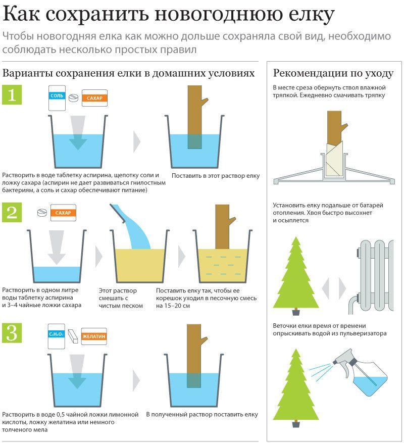 Как поставить новогоднюю елку