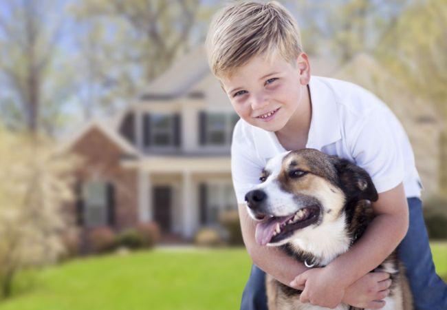 Имена для мальчиков в 2018 год Собаки
