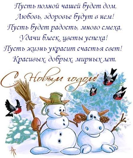 Прикольные новогодние поздравления коллеге