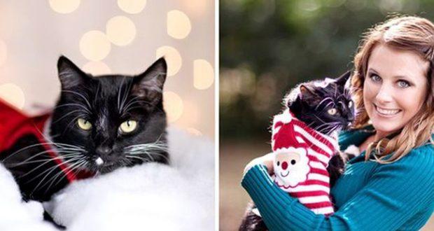 Фото с питомцем в свитере