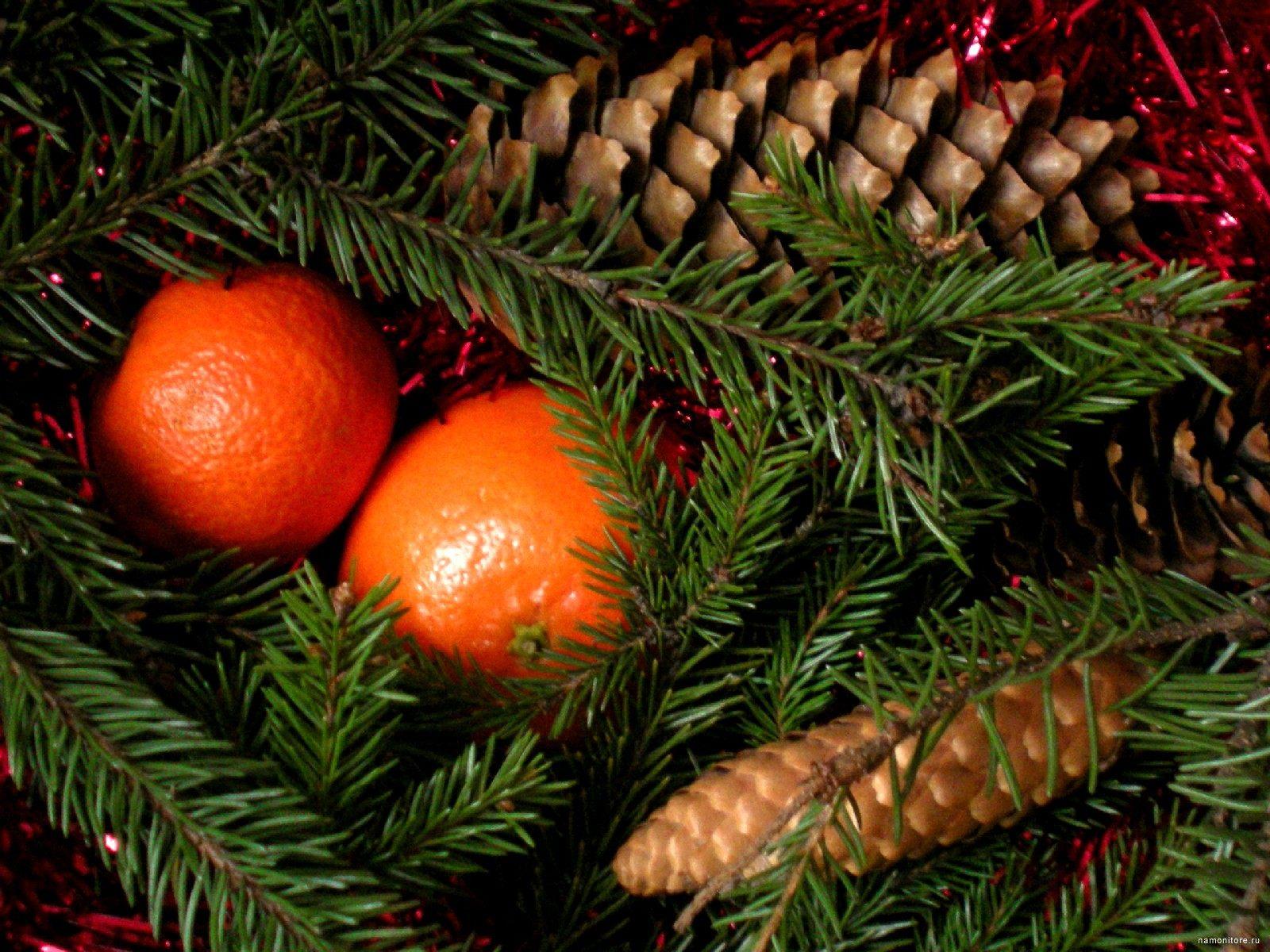 Картинки новый год мандарины