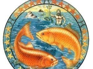 Гороскоп для Рыб на 2016 год Обезьяны