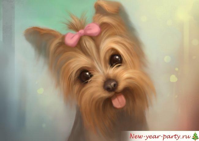 Как нарисовать Собаку поэтапно карашдашом