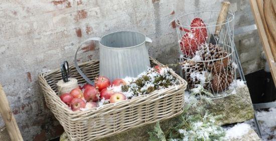 яблоки на улице
